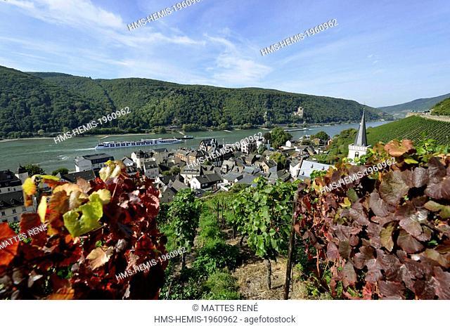 Germany, Rhineland Palatinate, Assmannshausen-Rudesheim and its vineyard, the romantic Rhine listed as World Heritage by UNESCO