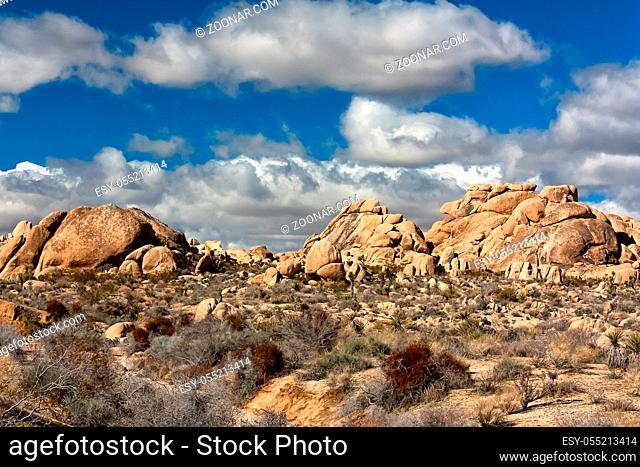 Joshua Tree National Park in Southern California, USA