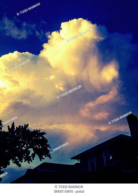 Cumulonimbus storm cloud at sunset with virga falling from anvil head
