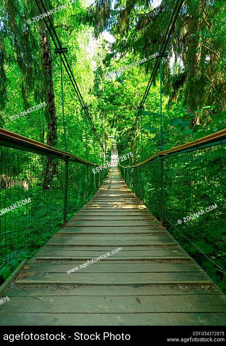 Suspension bridge ferriage in the woods