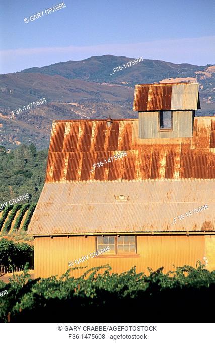 Barn at sunset in vineyard, above Lower Lake, Clear Lake, Lake County, California