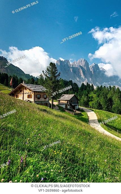 Funes Valley, Dolomites, South Tyrol, Italy. The Kaserillalm/Malga Caseril. In the background the peaks of the Odle