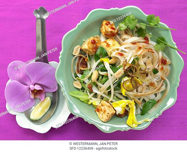 Vegetarian Pad Thai with tofu, egg, mungo mushrooms, spring onions and peanuts