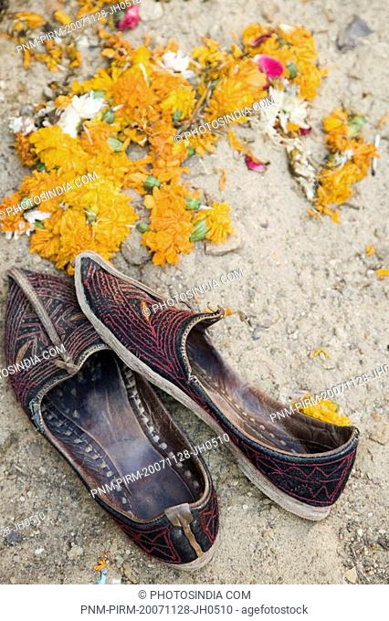 Close-up of flowers near a pair of footwear, Jaisalmer, Rajasthan, India