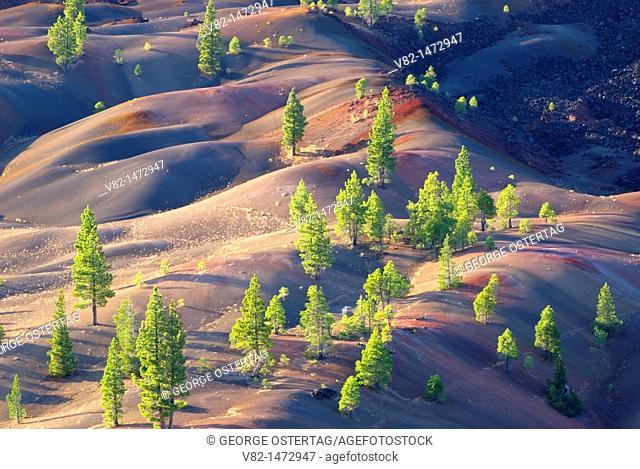 Fantastic Lava Flow from Cinder Cone, Lassen Volcanic National Park, California, USA