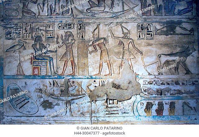 Medinet Habu, Luxor, Egypt, Djamet, mortuary temple of King Ramses III, XX dyn. 1185 -1078 B.C. the king harvest grain