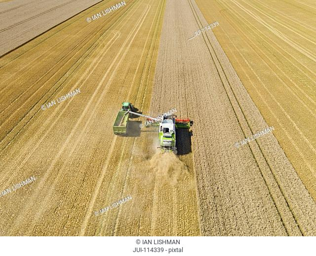 Aerial View Of Combine Harvester Harvesting Wheat Crop