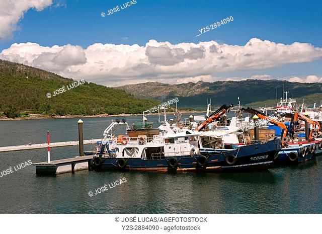 Fishing port, Muros, La Coruna province, Region of Galicia, Spain, Europe