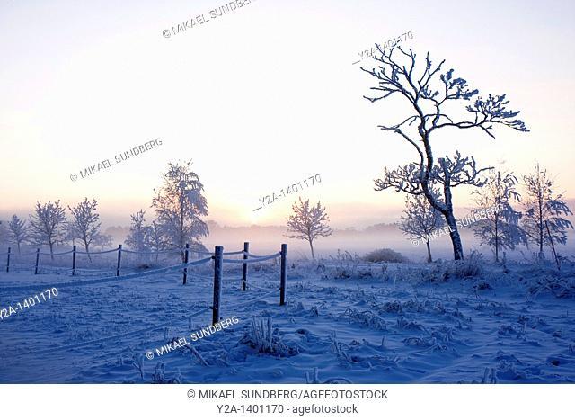 Karlslund in Orebro winter 2, Sweden