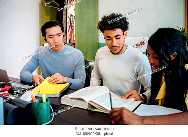 Young businesswoman and men having informal research meeting at table
