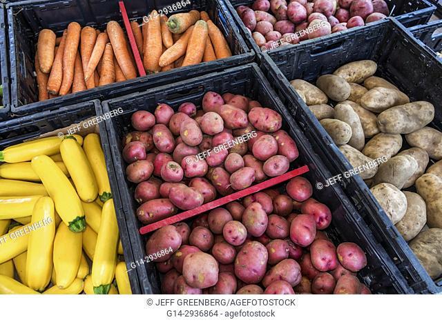 South Carolina, SC, North Myrtle Beach, Little River Farmers Market, carrot, squash, potatoes, vegetables