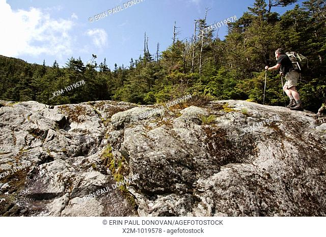 A hiker ascending Ammonoosuc Ravine Trail during the summer months  Located in the White Mountains, New Hampshire USA