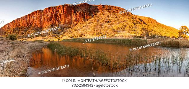 Dawn reflection on billabong, Finke River panorama, Glen Helen Gorge, MacDonnell Ranges, Northern Territory, Central Australia