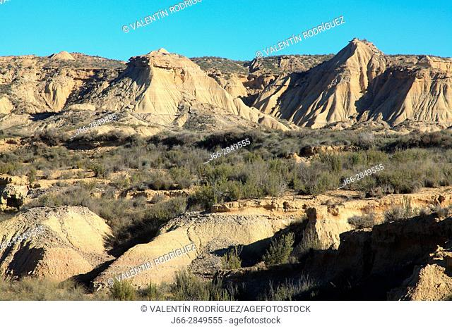 Landscape in the area called La Blanca Baja. Natural park Bárdenas Reales. Navarra