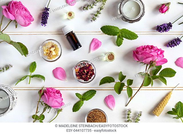 Bottles of essential oil with roses, peppermint, lavender and other herbs and flowers on a white background