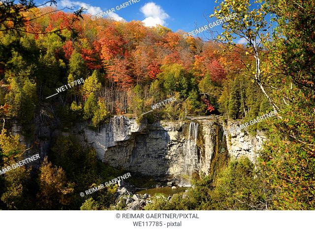 Eugenia Falls on the Beaver river Ontario Canada with Fall trees in color