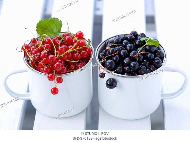 Red- and blackcurrants in two mugs