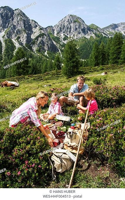 Austria, Salzburg, Family having picnic in mountains