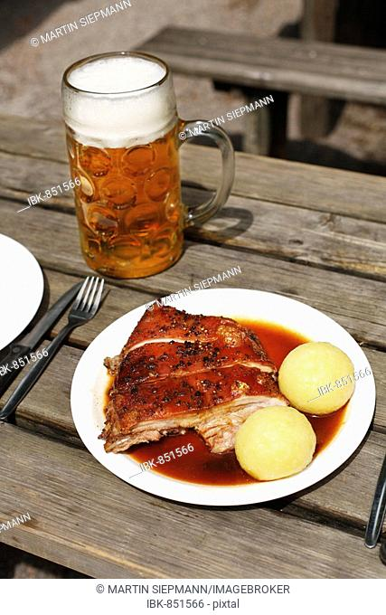 Suckling Pig with Dumplings and a mass of beer served in a beer garden in Taxisgarten, Munich, Bavaria, Germany, Europe