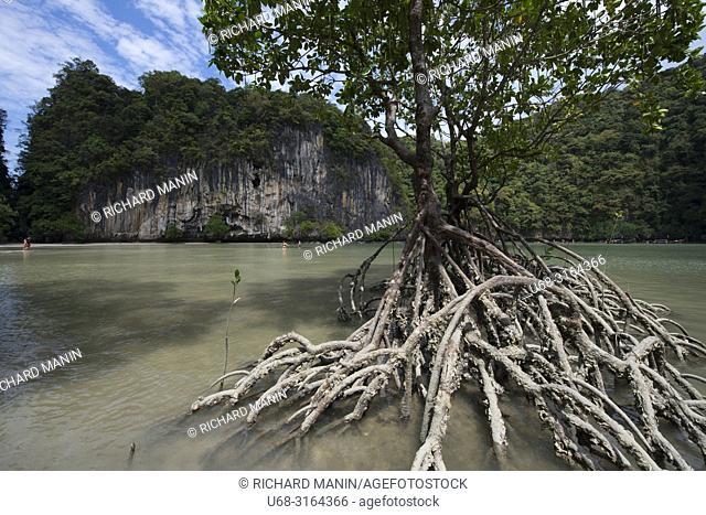 Thailand, Krabi bay, Koh Hong Island, Lagoon
