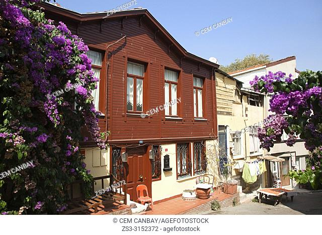 Old wooden house in the town center, Heybeliada-Halki, Prince Islands, Marmara Sea, Istanbul, Turkey, Europe