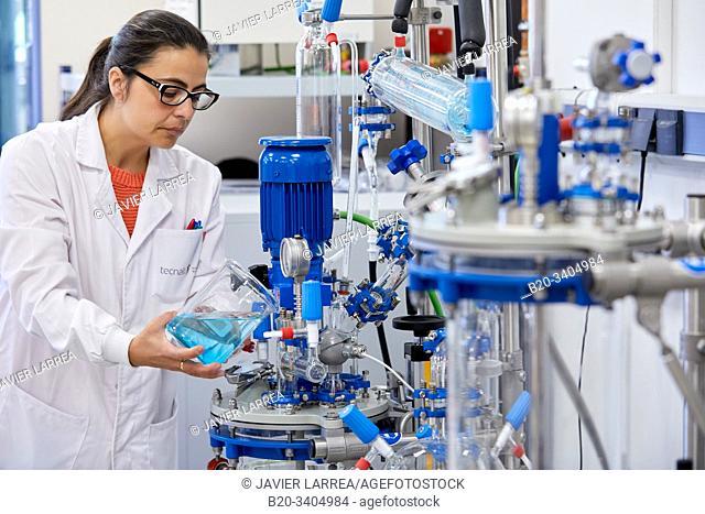 Minipilot, Glass Reactor, Pilot Plant equipment, Biotechnology Laboratory, Food industry, Unit of Health, Technology Centre, Tecnalia Research & Innovation