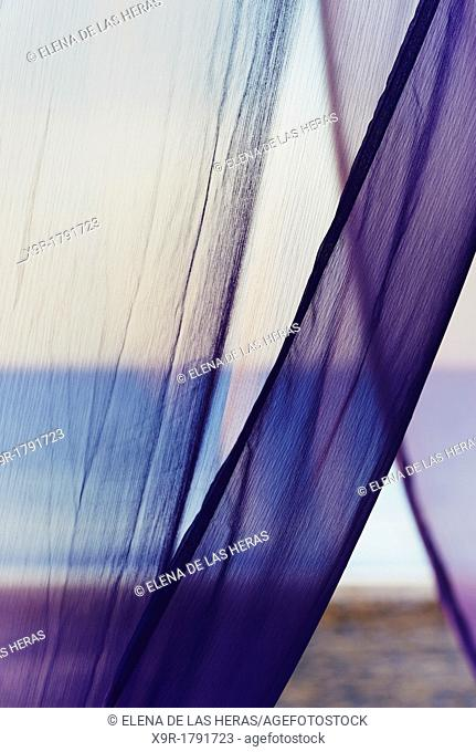 Violet veil at the beach
