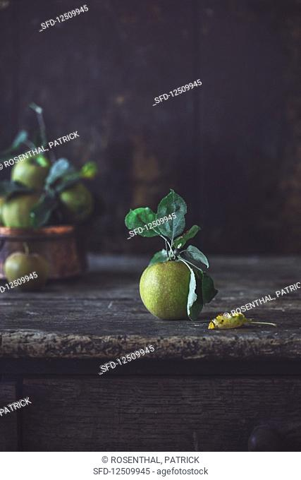 A farm apple with a stem and leaves