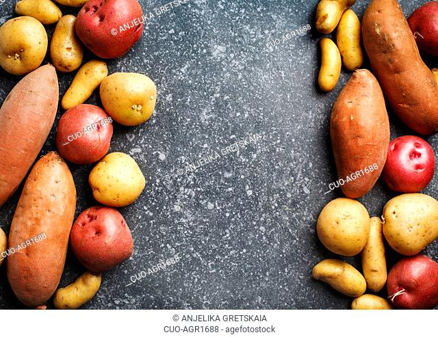Variety of raw uncooked organic potatoes: red, white, sweet and fingers potatoes over dark texture background. Top view, copy space