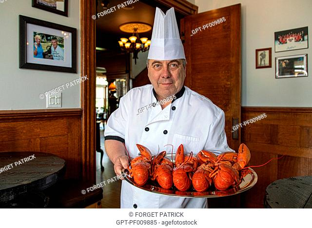 CHEF GILLES WITH HIS PLATE OF LOBSTERS FOR MAKING GUEDILLES, SHEDIAC, LOBSTER CAPITAL OF THE WORLD, NEW BRUNSWICK, CANADA, NORTH AMERICA