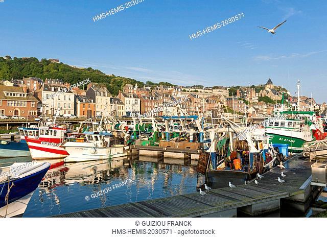 France, Seine Maritime, Le Treport, the fishing harbour