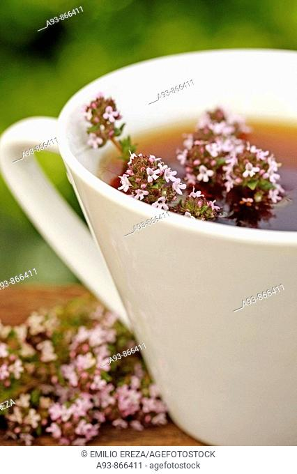 Thyme infusion (Thymus vulgaris)
