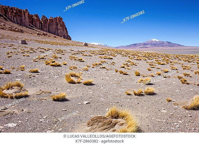 Andes Mountains at right, and at left Las Catedrales (The cathedrals) rock formation, near Salar de Tara, Altiplano,Puna, Atacama desert