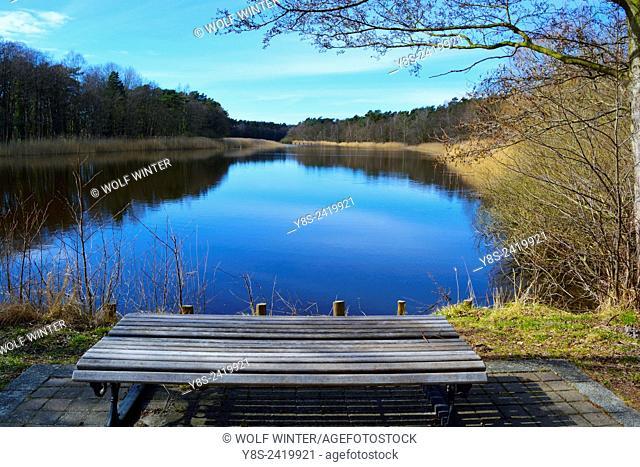 Lake Prerowstrom at Prerow, Darss peninsula, Mecklenburg-Western Pomerania, Germany