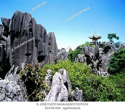 Shilin, Stone Forest Scenic Resort. Yunnan province, China