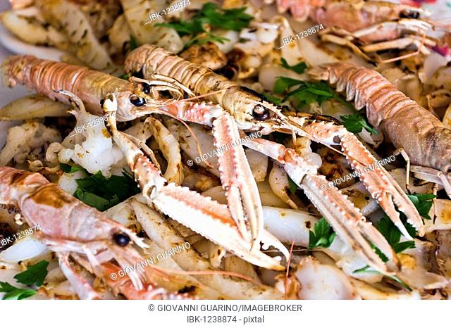Grilled giant prawn Stock Photos and Images | agefotostock