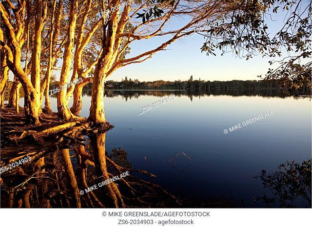 Lake Aisnsworth, Lennox Head, NSW, Australia