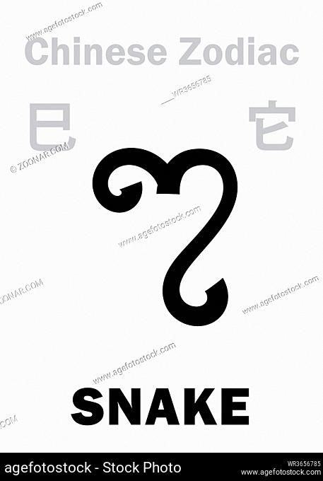 Astrology Alphabet: SNAKE [?] sign of Chinese Zodiac. Chinese character, hieroglyphic sign (symbol)