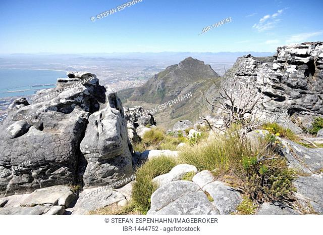 View from Table Mountain on Cape Town, Western Cape, South Africa, Africa