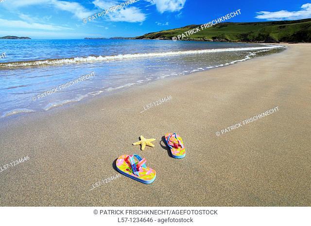 flip-flops and sea star on sandy beach, Sutherland, Scotland
