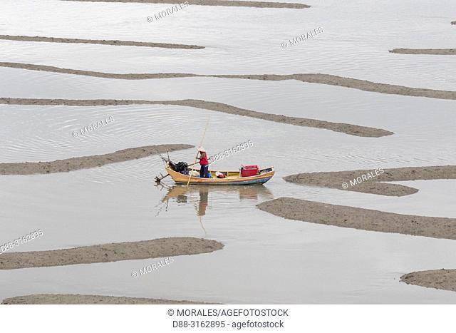 China, Fujiang Province, Xiapu County, nets in open sea, Fish catching