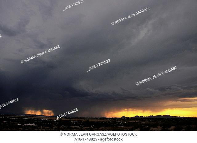 A microburst dumps rain around sunset in monsoon season in the Sonoran Desert,Tucson, Arizona, USA