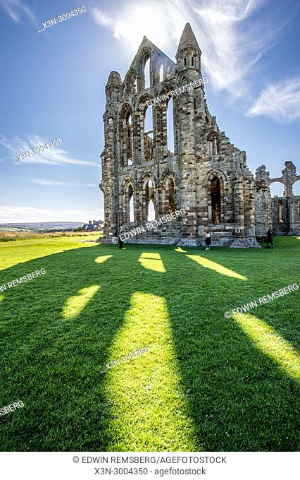 Sunlight casts powerful shadows of Whitby Abbey onto grassy field, Whitby, Yorkshire, UK