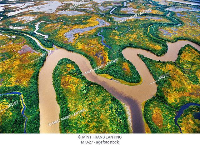 Wetlands aerial, Copper River Delta, Alaska