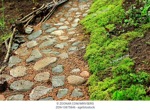 Cobbled footpath in the garden morning