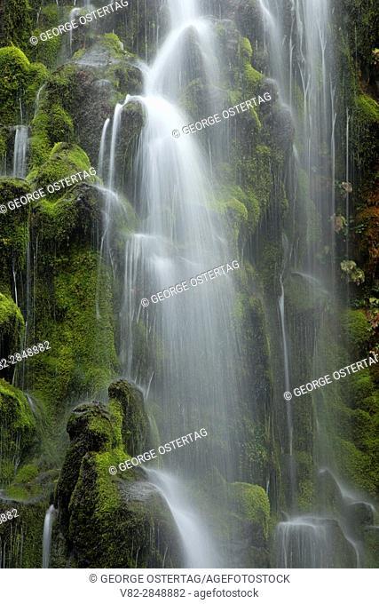Lower Proxy Falls along Proxy Falls Trail, Three Sisters Wilderness, Willamette National Forest, Oregon