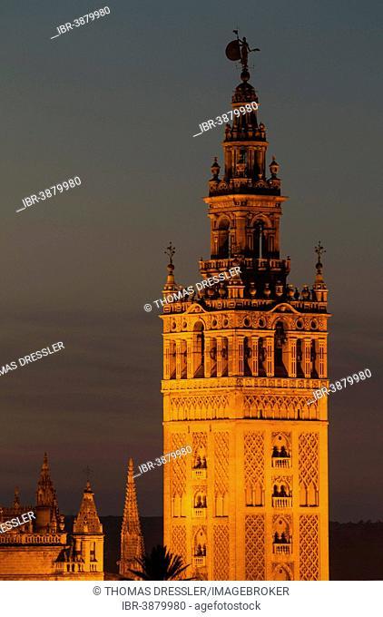 Giralda, illuminated at dusk, Seville, Seville province, Andalucía, Spain