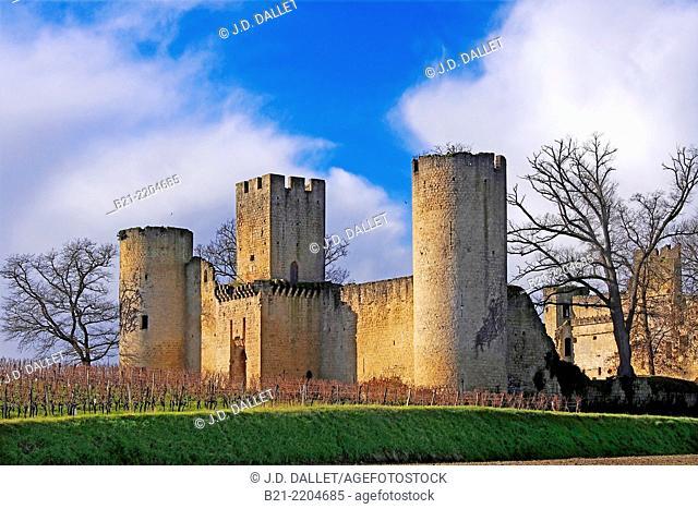 Château de Budos, Gironde, Aquitaine, France