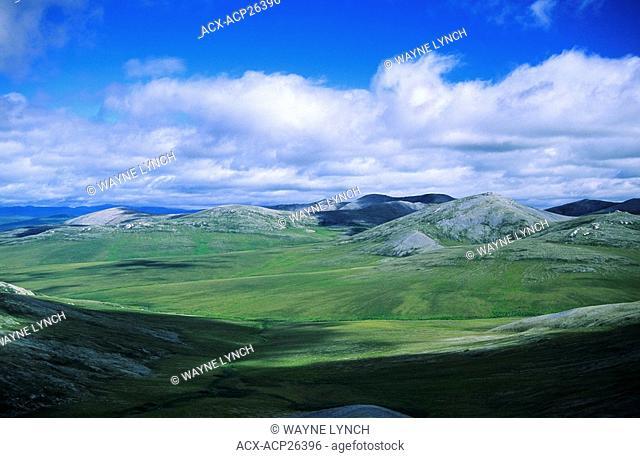 British Mountains, Vuntut National Park, northern Yukon, Arctic Canada