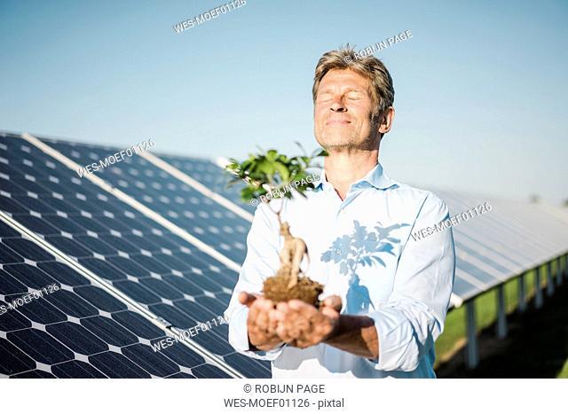 Mature man looking at privet, solar plant